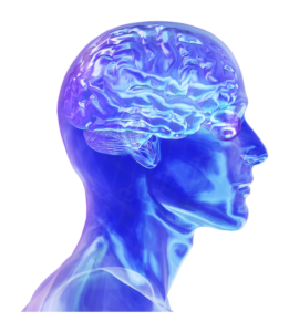 Brain Tumour Neuro-rehabilitation