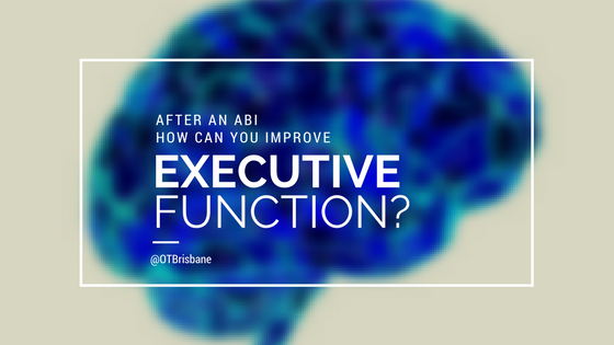 Improve Executive Function