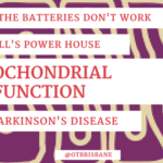 The Mitochondrial Dysfunction Connection and Parkinson's Disease